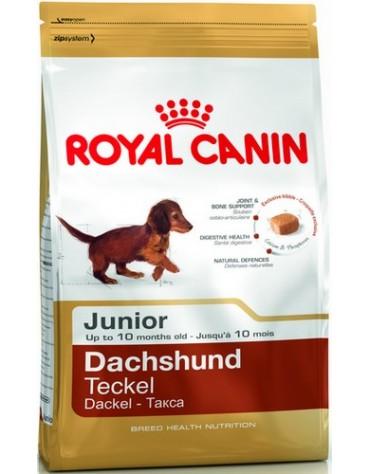 Royal Canin Dachshund Junior karma sucha dla szczeniąt do 10 miesiąca, rasy jamnik 1,5kg