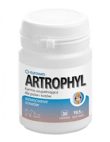 Artrophyl 30tabl. - układ ruchu