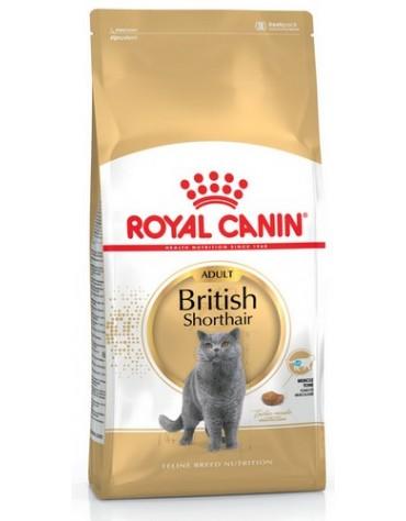 Royal Canin British Shorthair Adult karma sucha dla kotów dorosłych rasy brytyjski krótkowłosy 4kg