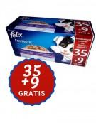 Felix Fantastic Agail Box Mix Promocja saszetki 44x100g