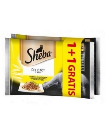 Sheba Delicacy Drobiowe Dania w galaretce saszetki 4+4 gratis 8x85g