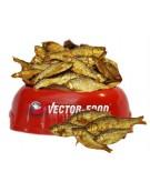 Vector-Food Suszona rybka (sardynka) 100g