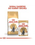 Royal Canin British Shorthair Adult karma sucha dla kotów dorosłych rasy brytyjski krótkowłosy 2kg
