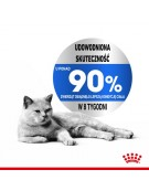 Royal Canin Light Weight Care karma sucha dla kotów dorosłych, utrzymanie prawidłowej masy ciała 400g