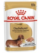 Royal Canin Dachshund karma mokra - pasztet, dla psów dorosłych rasy jamnik saszetka 85g