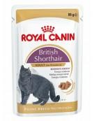 Royal Canin British Shorthair karma mokra w sosie dla kotów dorosłych rasy brytyjski krótkowłosy saszetka 85g