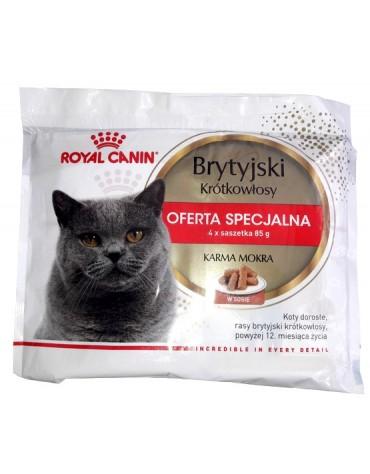 Royal Canin British Shorthair karma mokra w sosie dla kotów dorosłych rasy brytyjski krótkowłosy multipak saszetki 4x85g