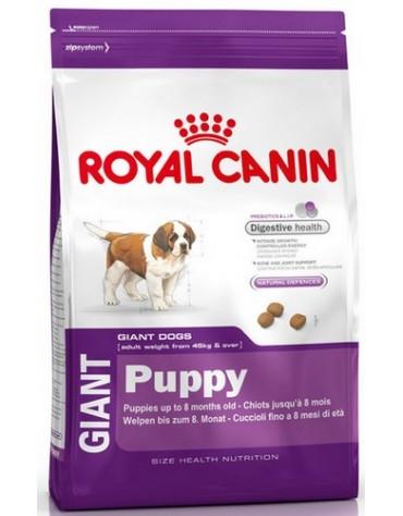 Royal Canin Giant Puppy karma sucha dla szczeniąt, od 2 do 8 miesiąca życia, ras olbrzymich 15kg