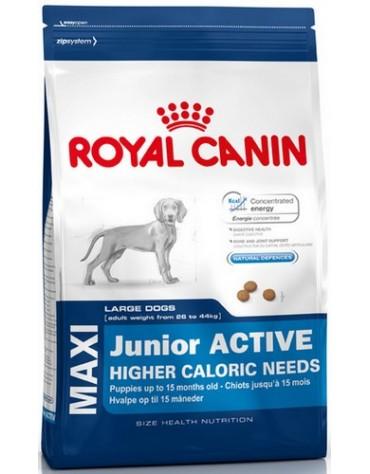 Royal Canin Maxi Puppy Active karma sucha dla szczeniąt ras dużych o wyższym zapotrzebowaniu energetycznym 15kg