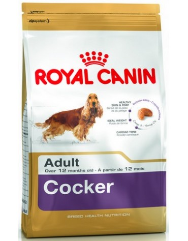 Royal Canin Cocker Spaniel Adult karma sucha dla psów dorosłych rasy cocker spaniel 3kg