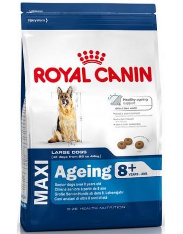 Royal Canin Maxi Ageing 8+ karma sucha dla psów dojrzałych, po 8 roku życia, ras dużych 15kg