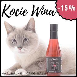 Kocie wina