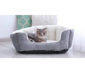 Jak wybrać odpowiednie legowisko dla kota? Sprawdź praktyczne porady